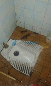 Tıkalı Tuvalet